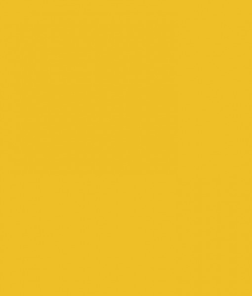 productimage-picture-c120-mustard-27518